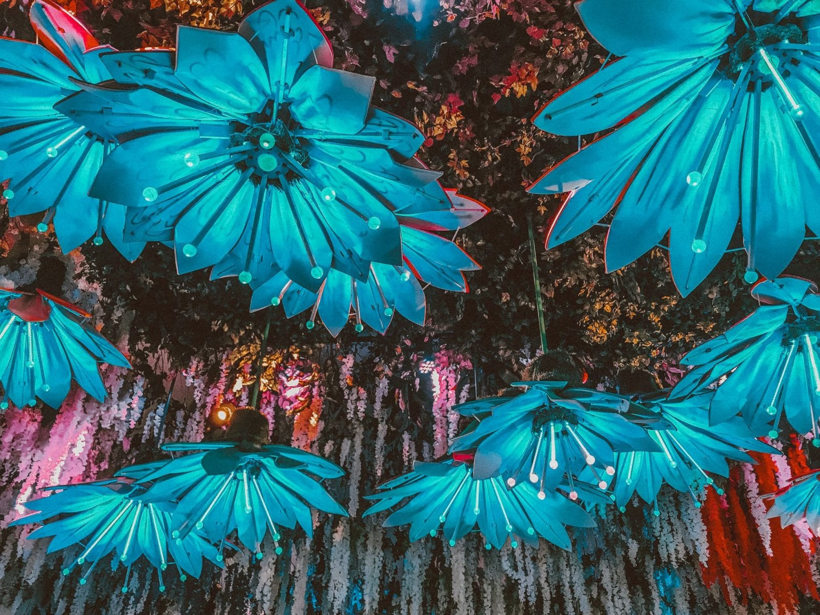 This is a photo of the Coachella decor in 2018, incorporating blue floral.