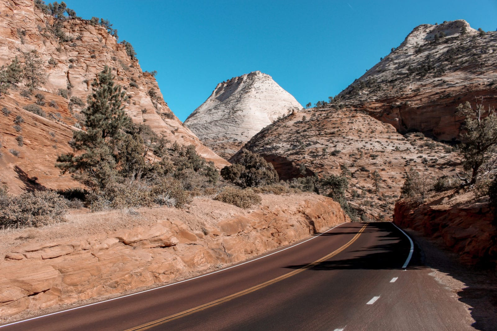 This is a shot of Zion National Park, with the road and the mountains in the background.